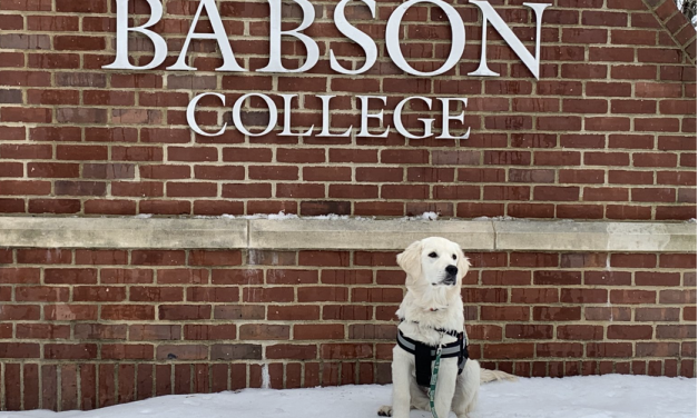 Welcome Roger: Babson's New Puppy!